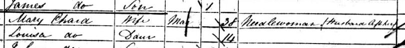Mary Johnson_1851 census